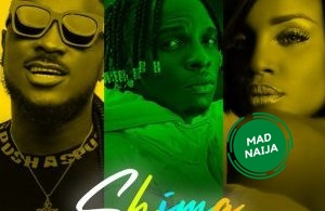 Idahams Ft Peruzzi & Seyi Shay – Shima (Remix)