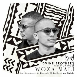 Dvine Brothers – Woza Mali (Thakzin Extended Remix) Ft. Nokwazi